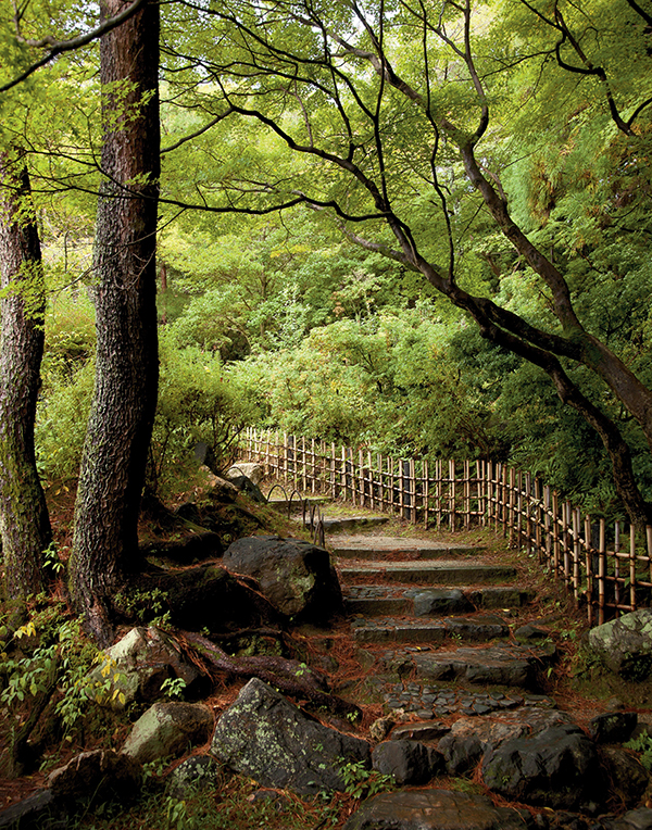 """""""Maruyama Park,"""" Pico Iyer writes, """"quickly came to embody for me precisely the sense of secludedness, the subtlety — the rich reticence — I'd come to Kyoto to try to absorb."""""""