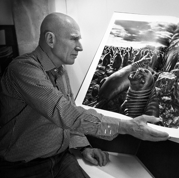 Sebastião Salgado spent eight years shooting material worldwide for his new book, Genesis, recently published by Taschen. A special art edition, featuring one of five Salgado prints, is available exclusively on 1stdibs. Photo by Lelia Wanick Salgado. All other images courtesy of Sebastião Salgado/Amazonas Images