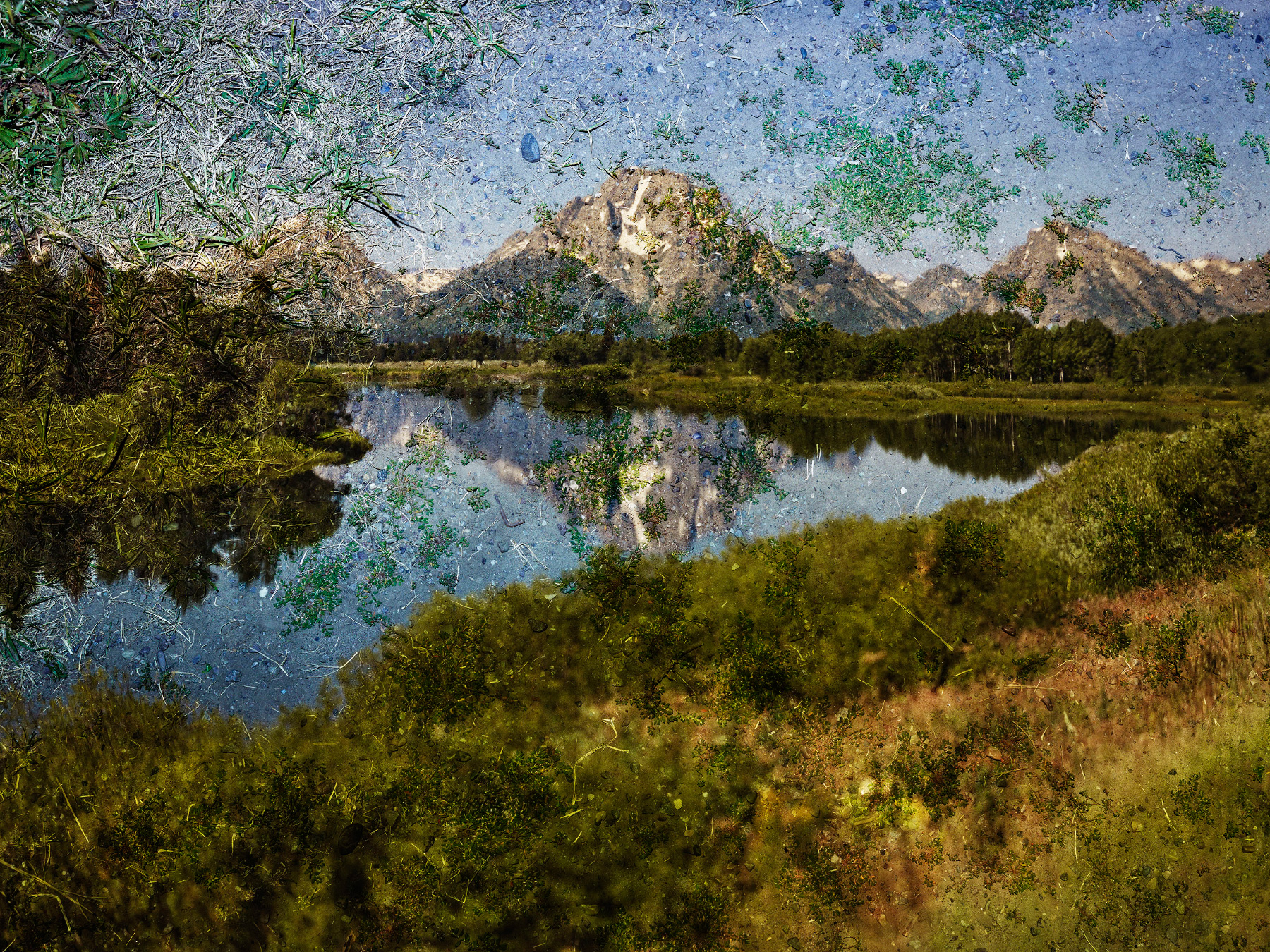 Tent‑Camera Image on Ground: View of Mount Moran and the Snake River from Oxbow Bend, Grand Teton National Park, Wyoming, 2011, Abelardo Morell